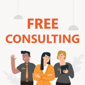 Consulting V5 Free Consulting